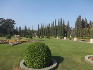 Bahai Garden7