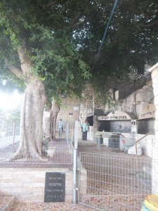 Eliyah's Cave(Haifa)